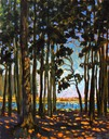 Cool shadows in the Pines SOLD
